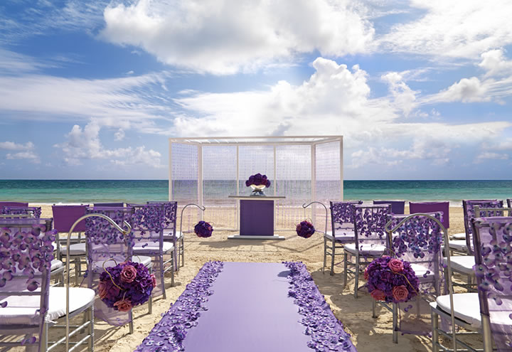 Lavender Luxe Collection Wedding Package